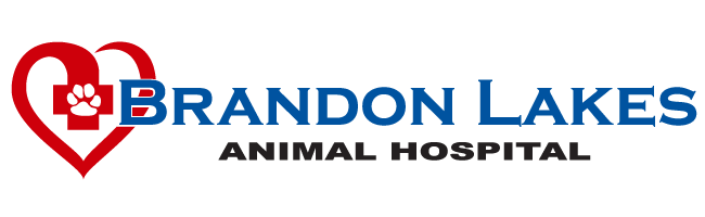 Brandon Lakes Animal Hospital